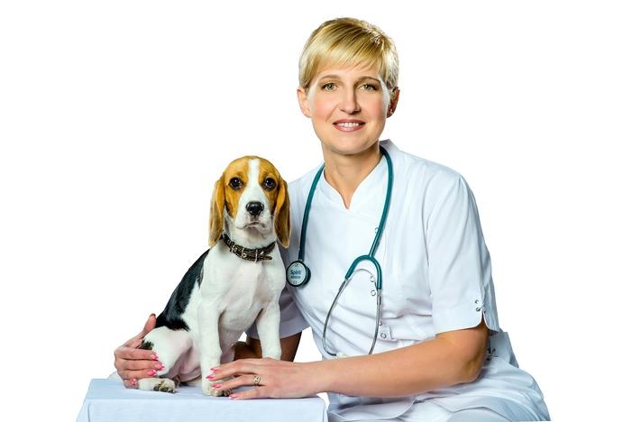 1435663216_veterinarnaya-klinika